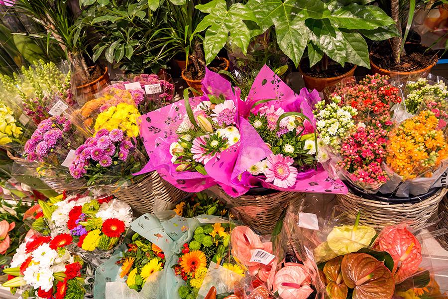 Floristik im EDEKA in Amberg